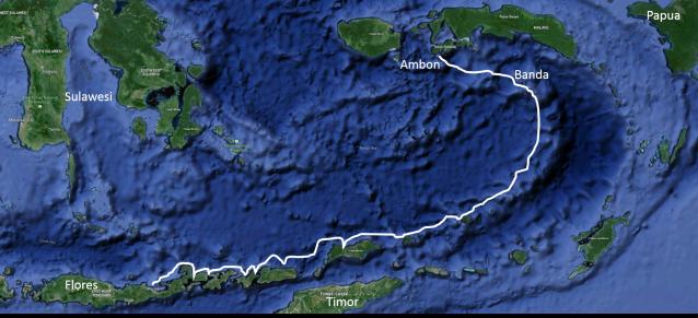 Maumere to Ambon