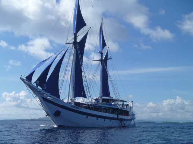 Ombak Puith with sails 2