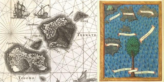Clove islands ternate tidore