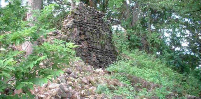 Remnants of Fort Henricus